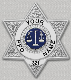 California private patrol operator license examination